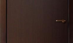 Faneruotos vidaus durys #14