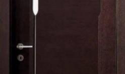 Faneruotos vidaus durys #20